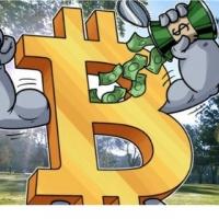 Мир Криптовалюты