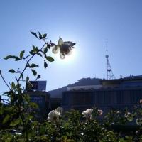 Tbilisi_life