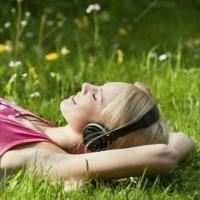 Звуки природы. Орнитотерапия