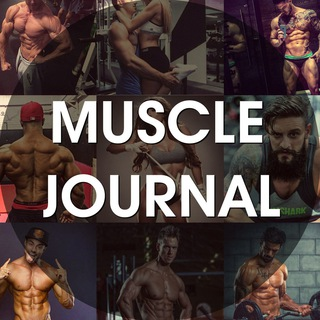 Muscle Journal