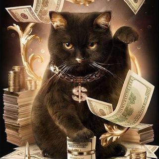 Кот инвестор